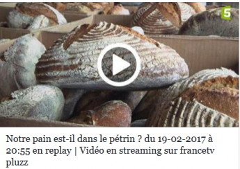 Emission sur france 5 sur le pain et sa composition